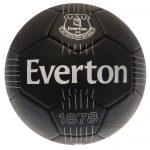 Fotbalový míč Everton FC